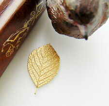 BRASS (2 Pieces) ASPEN Woodland Birch Leaf Stamping - Findings (FB-6034) `