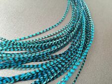 Lot 10 Turquoise blue Grizzly Feathers Hair Extensions Long Striped TURQ GRIZ