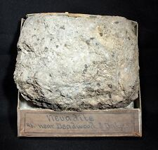 727 gram Nevadite Rhyolite with original Wards Box & Label from late 1800's