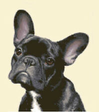 BLACK FRENCH BULLDOG dog - counted cross stitch kit