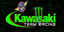 "Kawasaki ""custom personalize License Plate""-Free Text"