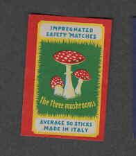 Ancienne étiquette   Allumettes  Italie Champignon