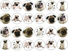 24X PUG DOGS CUTE/FUNNY Edible Wafer Fairy Cupcake Bun Toppers Buy 2 Get 1 Free