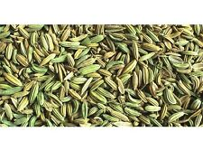 100 GRAM OF BEST QUALITY WHOLE SPICE FENNEL SEEDS WITH FREE WORLDWIDE SHIPPING