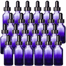 1oz Purple Shaded Glass Bottles with Black Glass Dropper Tops Pack of 24, New