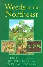 Weeds of the Northeast by Richard H. Uva (1997, Paperback)