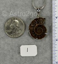 AMMONITE PENDANTS $49 Sterling Silver Fossil Jewelry by STARBORN CREATIONS NEW!