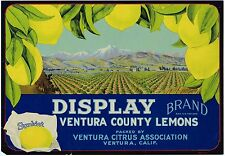 ORIGINAL LEMON CRATE LABEL VENTURA CALIFORNIA 1930S DISPLAY VALLEY VIEW RARE