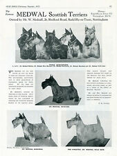 SCOTTISH TERRIER SCOTTIE DOG BREED KENNEL ADVERT PRINT PAGE OUR DOGS 1951 MEDWAL