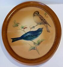 VINTAGE A TRUART PRODUCT OVAL PLASTIC FRAMED BIRD PICTURE