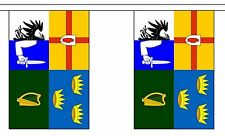 4 PROVINCES 18m BUNTING 30 flags flag IRISH MUNSTER LEINSTER CONNACHT ULSTER