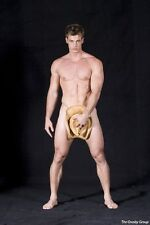 William Levy Poster [17 x 24] Hot Male Actor #17