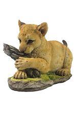 """8.5"""" Lion Cub Statue Figurine Wild Animal Safari Sculpture Jungle Decor"""