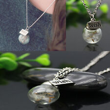Crystal Ball Real Dandelion Seed Wishing Wish Pendant Necklace Long Silver Chain