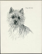 CAIRN TERRIER HEAD STUDY LOVELY VINTAGE 1930'S DOG ART PRINT by KF BARKER