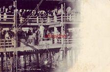 PRE-1907 ATLANTIC CITY - A NET HAUL FISHERMEN and DOZENS OF ONLOOKERS ON PIER