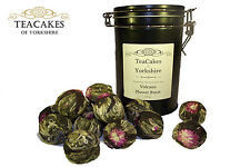 Artisan Green Gift Caddy Tea Volcano Flower Burst Flowering 15 balls