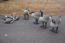 G&H Full Body Greater CANADA GOOSE HONKER DECOYS, 3-FLOATERS, 4-STANDING