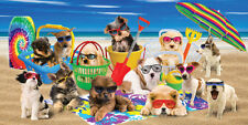 "Cool Dogs Cute Puppies Beach Summer Time  Velour Beach Towel (30""x60"")"
