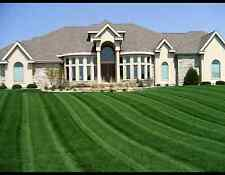 10 LBS KENTUCKY 31 TALL FESCUE GRASS SEED LAWN OR PASTURE GRASS DROUGHT TOLERANT