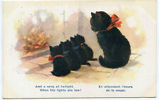 CHATS NOIRS.BLACK CATS..