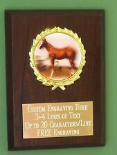 Horse/Equestrian/County Fair Award Plaque 4x6 Trophy FREE engraving
