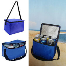 6 Cans Cooling Insulated Bag Food Drinks Picnic Carrier Thermo Storage Foldable