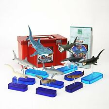 Sharks of The World PVC Figure DX Set 9 pcs In Box Colorata Japan