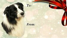 Border Collie Dog Self Adhesive Gift Labels No. 1. design by Starprint