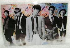 Korea Idol SHINee Boys Meet U 2013 Taiwan Promo mini Folder (ClearFile)