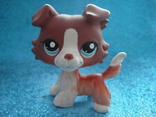 100% ORIGINAL Littlest Pet Shop Collie DOG,  # 1542 Shipping with Polish