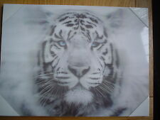 TIGERS FACE 3D WALL ART PICTURE, BLACK AND WHITE.