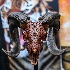 REAL HAND CARVED RAM SKULL + HORNS / Taxidermy buffalo steer cow antique sheep