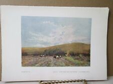 Vintage Print,HAY FIELD,Water Colour Society,1804-1904
