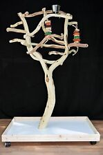 Manzanita Parrot Tree Bird Stand Toy Play Gym like Java Wood Sandblasted SB51M3