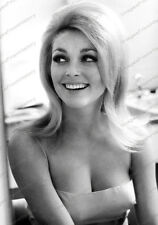8x10 Print Sharon Tate Beautifful #86723