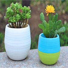 Decor Office Flower Pots Cute Garden More meat pots Planter Round Plastic Home