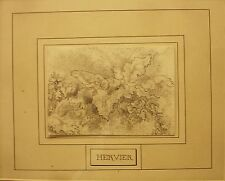 Pencil drawing of a plant by Louis Adolphe Hervie