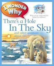I Wonder Why: I Wonder Why There's a Hole in the Sky and Other Questions...