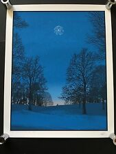 DAN MCCARTHY - Like A Diamond In The Sky - screenprint art SIGNED NUMBERED print