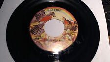 ANGEL IN YOUR ARMS/JUST CAUSE I'M GUILTY  45 RPM -BIG TREE  RECORDS NM+ BT 16085