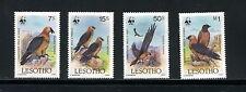 Lesotho #512-5  WWF birds vultures  1986 4v. MNH- D273