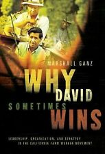 Why David Sometimes Wins : Leadership, Organization, and Strategy in the...