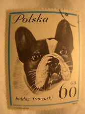 Poland Stamp 1963 Scott 1119 A397  Buldog 60 Gr