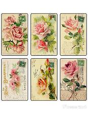 6 ROSE POSTCARD - FLOWER VINTAGE 155 LB PAPER CRAFT CARD SCRAPBOOK TAG L