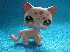 ORIGINAL Littlest Pet Shop  Short Hair Cat  # 852 Shipping with Polish