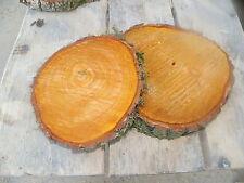 5 x Baumscheibe, Holzscheibe, 20 x 3 cm, Erle
