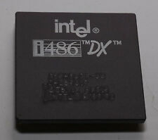 VINTAGE INTEL I486DX/33 CPU PROCESSOR A80486DX-33  SX810