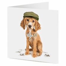 MUCKY PUP Cocker Spaniel Puppy Dog compleanno o generale greeting card