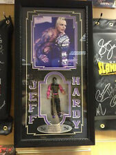Jeff Hardy Hand Painted Figure in Plaque (Signed By Jeff Hardy)